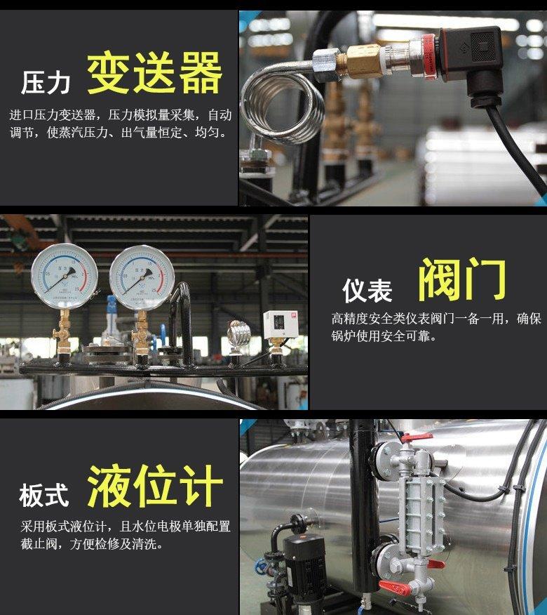 WDR electric steam boiler detail 2.jpg